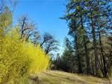 9880 Harrington Flat Road - Photo 13