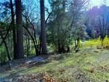 9880 Harrington Flat Road - Photo 15