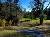 9880 Harrington Flat Road - Photo 5