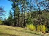 9880 Harrington Flat Road - Photo 9