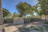 30390 Sparkle Drive - Photo 60