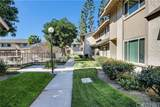 5950 Imperial - Photo 24
