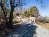 50584 Falcon View Road - Photo 3
