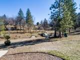50584 Falcon View Road - Photo 35