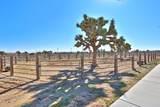 10348 Mesa Street - Photo 65