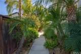 35024 Via Santa Catalina - Photo 9