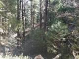 0 Alder Creek Road - Photo 1