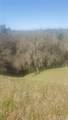2667 Tree Trap Road - Photo 2