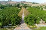 6933 Solano Verde Drive - Photo 57