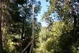 5588 Alpine Road - Photo 30