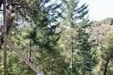 5588 Alpine Road - Photo 34