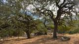 0 Oak Glen Avenue - Photo 14