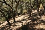 0 Robinson Canyon Road - Photo 13