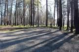 5926 Sawmill Road - Photo 3