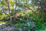 3600 Foothill Road - Photo 61