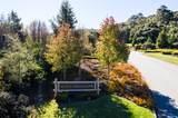 5501 Quail Meadows Drive - Photo 9