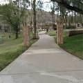 23870 Cedar Creek Terrace - Photo 24