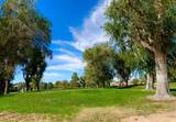 12985 Briarcliff Drive - Photo 2