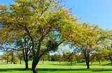 12985 Briarcliff Drive - Photo 10