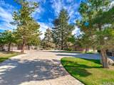 36560 Lion Peak Road - Photo 4