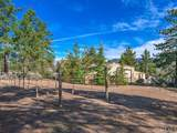 36560 Lion Peak Road - Photo 58