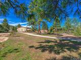 36560 Lion Peak Road - Photo 59