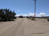 10432 Trinidad Road - Photo 43