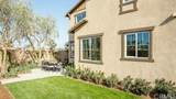 41453 Winterberry Street - Photo 8
