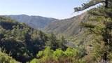 22309 Pine Drive - Photo 50
