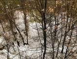 1474 Sequoia Drive - Photo 33