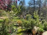 50537 Cedar Valley Drive - Photo 9