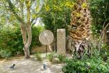 68610 Hermosillo Road - Photo 29