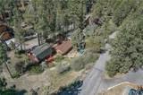 42798 Conifer Drive - Photo 7