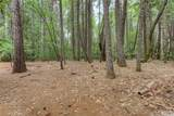 15158 Torey Pine Road - Photo 31