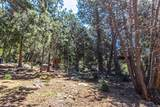 24676 Forest Drive - Photo 6