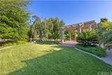3051 Sonrisa Drive - Photo 40