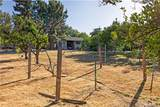 3051 Sonrisa Drive - Photo 45