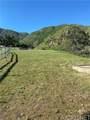13910 Kagel Canyon Road - Photo 1