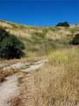 17342 Santiago Canyon Road - Photo 5