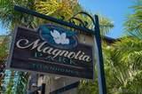 910 Magnolia Ave - Photo 25