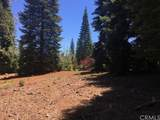 464 Snowy Peak Way - Photo 2