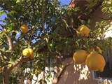 408 Calle Vista Torito - Photo 44