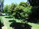 5507 Paseo Del Lago - Photo 12