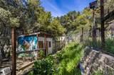 40678 Taylor Mountain Court - Photo 58