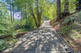 398 Shadow Mountain Road - Photo 14