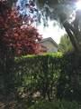 28302 Laura La Plante Drive - Photo 4