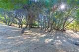 4121 Indian Rock Lane - Photo 34