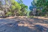 4121 Indian Rock Lane - Photo 44