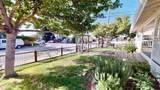 203 San Juan Avenue - Photo 3