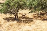 0 Shirtail Canyon (Hwy 146) - Photo 4